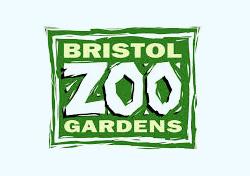 Tim Skelton (Curator of Reptiles & Amphibians, Bristol Zoo Gardens, UK)