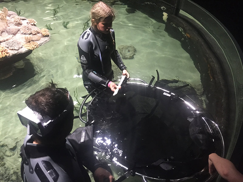 Universeum Sweden using our Small Ray Tray